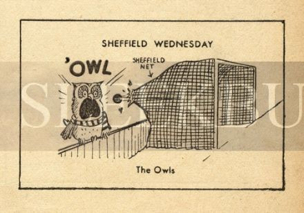 VINTAGE Football Print SHEFFIELD WEDNESDAY - THE OWLS Funny Cartoon